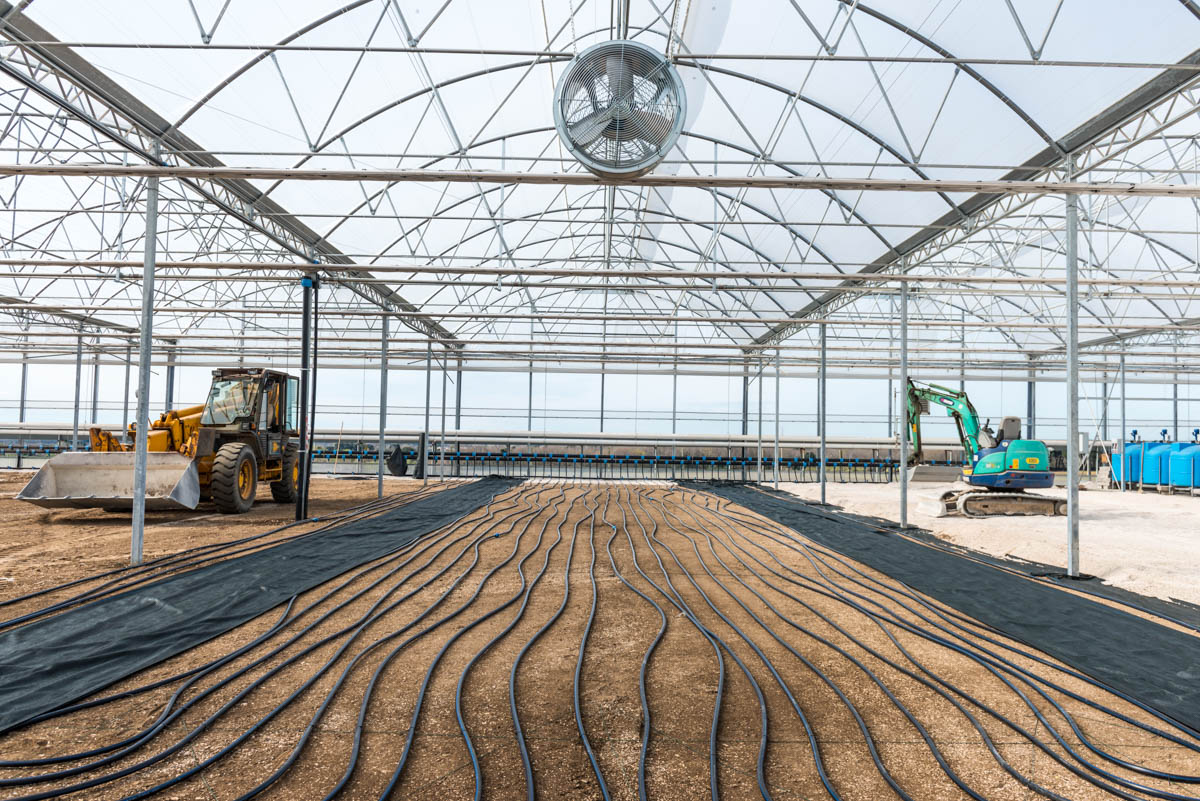 Florovivaistica saracino for Irrigazione serra